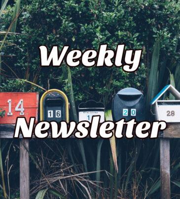 Teachhoops.com Member Newsletteer
